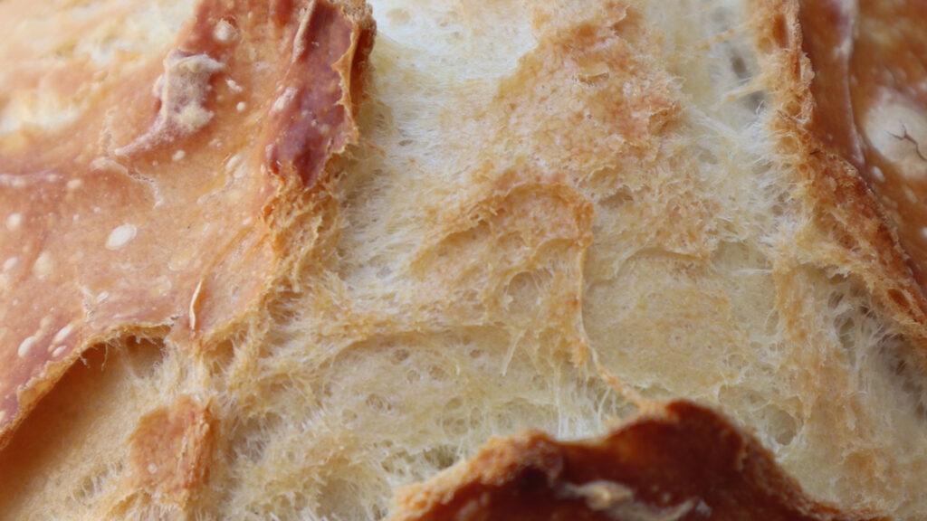 es-aconsejable-comer-pan-caliente-1920